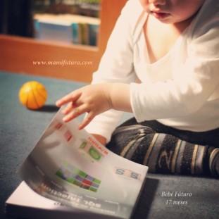 libros-tecnicos
